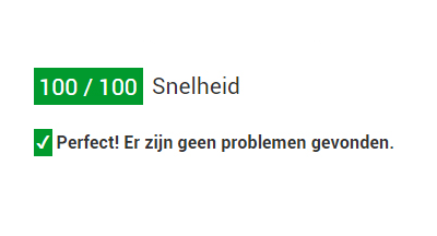 Pagespeed: zo scoor je 100 procent!
